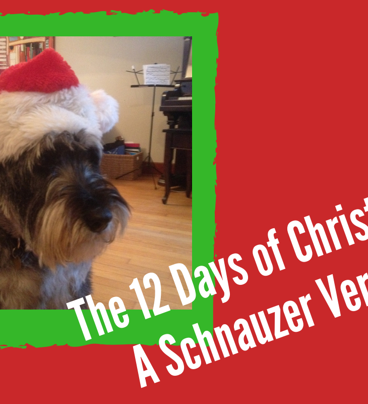 "A photo of a grumpy looking schnauzer with a Santa hat is featured in a bright green box, set against a bright red background. Stamped at an angle along the bottom right is the title ""The 12 Days of Christmas: A Schnauzer Version"""