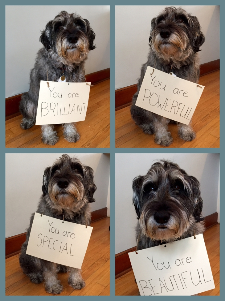 compliments-from-dog.