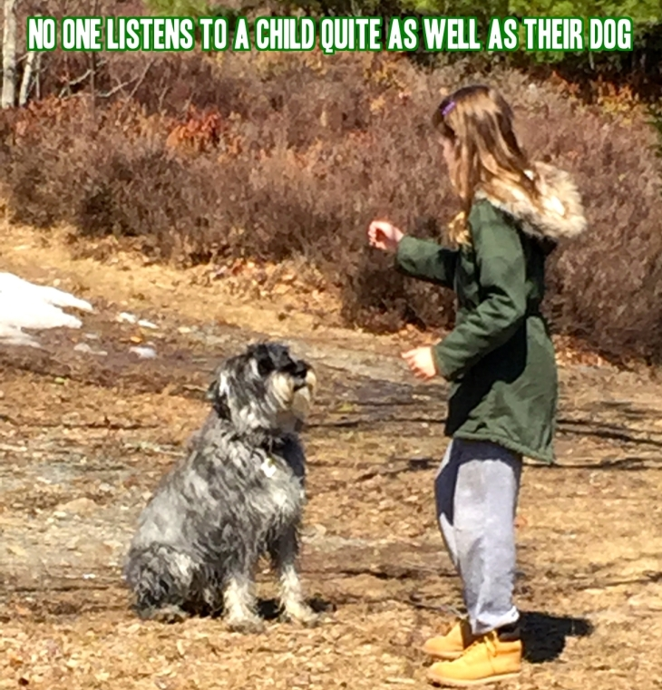 dogs-great-listeners