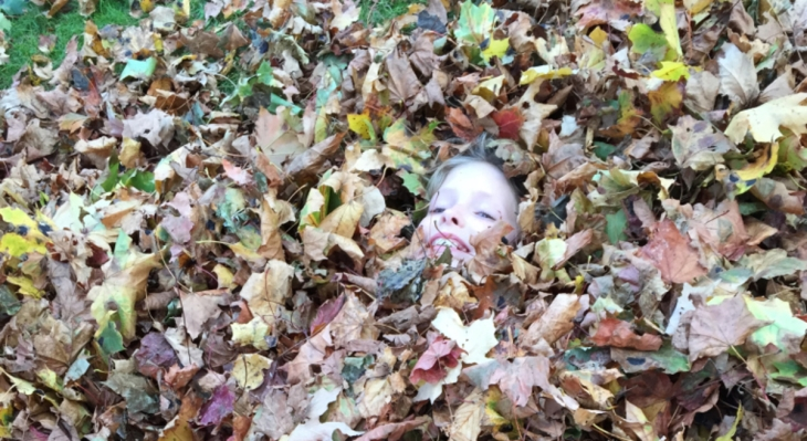 buried-in-leaves